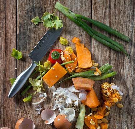 Food waste_new website.jpg