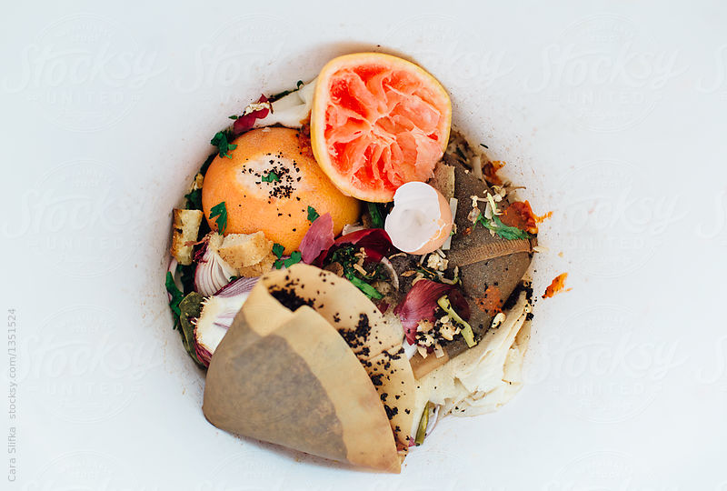 Food waste stats and facts